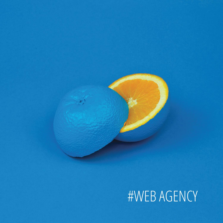 Zona Attiva, agenzia di comunicazione, web agency, social media agency Rimini.